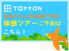 taikan01のコピー